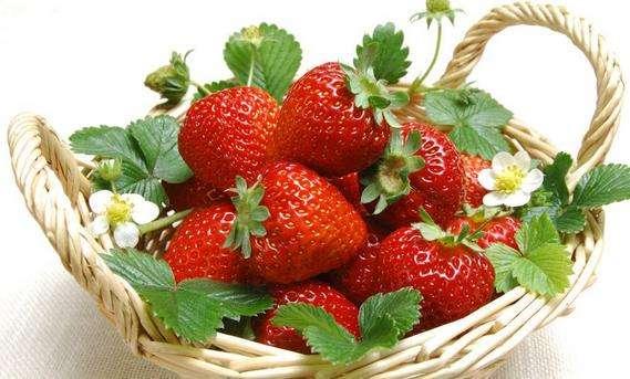 草莓的农残检测报告