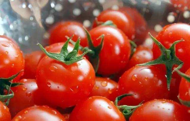 番茄第三方检测报告