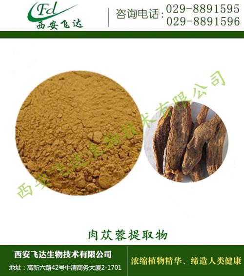 西安本地 源厂家直销 肉苁蓉提取物 现货供应 报价