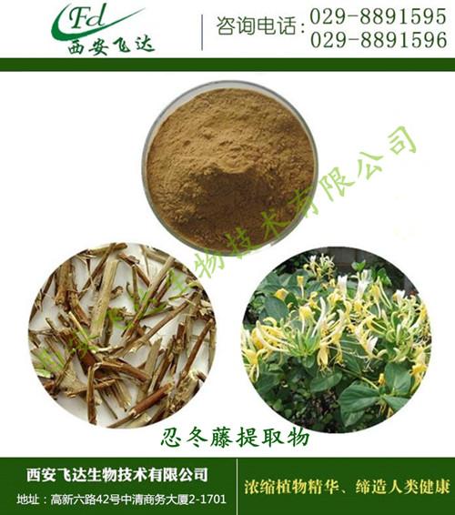 西安  12月源厂家直销  忍冬藤提取物 植物提取物  报价
