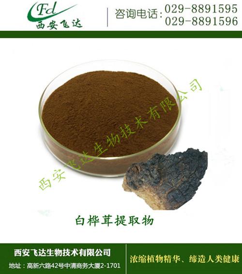 2020 实体工厂  自产自销  白桦茸提取物 桦褐孔菌提取物 报价