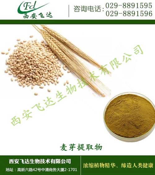 西安老牌工厂  源厂家直销   麦芽提取物  纯植提取物  现货