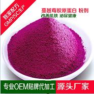 蓝莓果粉代加工贴牌oem 源头各种粉剂定制