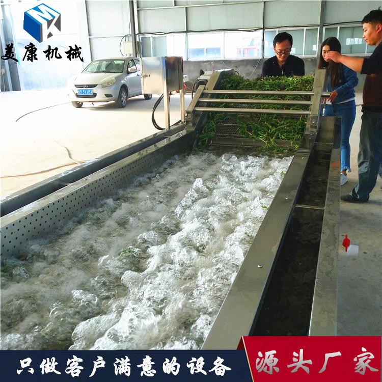 大型全自动山野菜专用清洗机 刺嫩芽酱菜清洗漂烫深加工设备价格