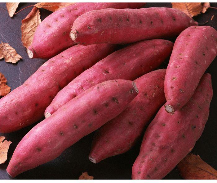 红薯的农残检测项目
