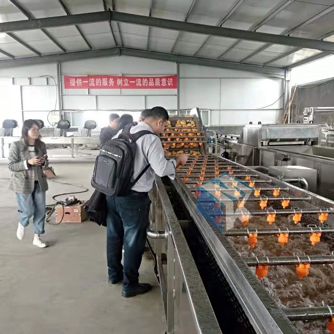 厂家专业生产净菜加工设备 蔬菜高压气泡清洗流水线 洗菜机