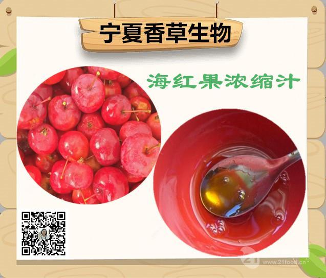 海红果浓缩汁 鲜汁 原浆批发 宁夏海红果汁出厂价