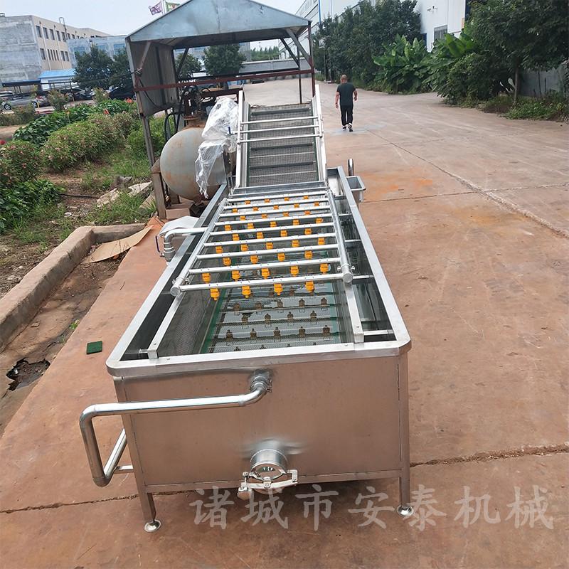 湖北藕帶加工設備 藕帶氣泡清洗機