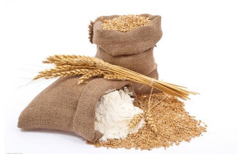 现货供应食品级面粉增筋剂厂家价格