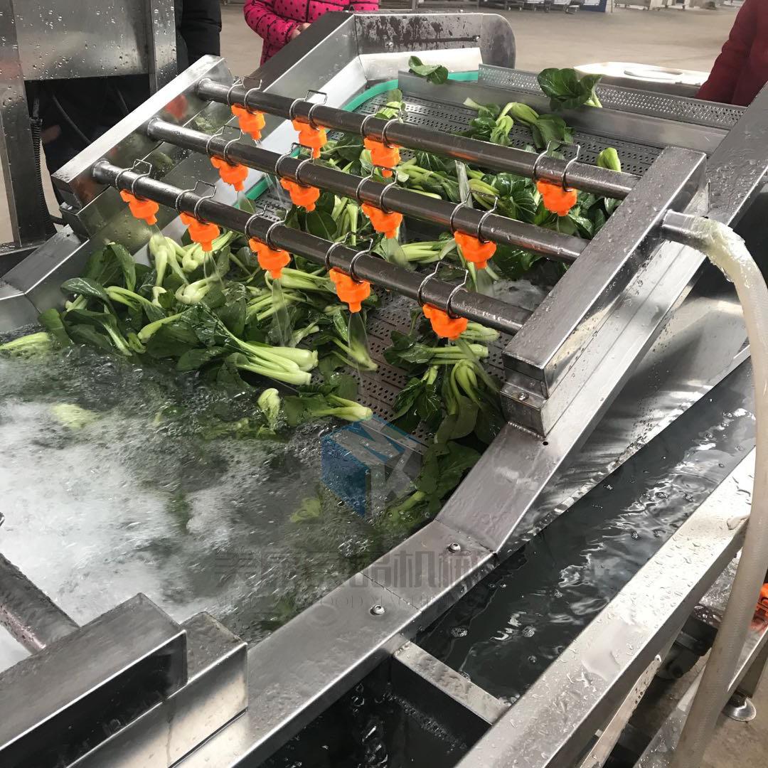 大型蔬菜干漂烫线 速冻油菜深加工2t/1时漂烫冷却生产线价格
