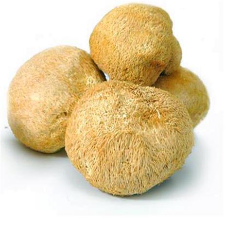 猴头菇连续式专用蒸汽漂烫机 食用菌全自动漂烫杀青护色流水线