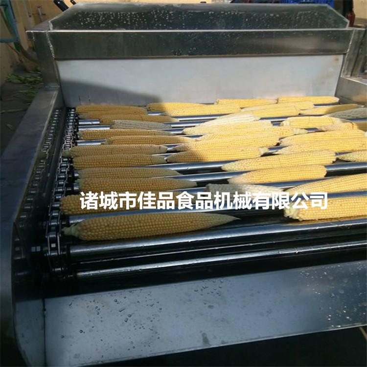 云南鲜食玉米清洗机
