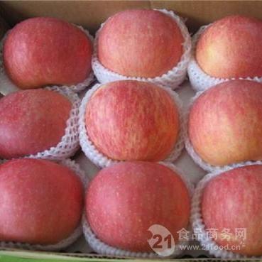 三门峡市红富士苹果价格行情 红富士苹果格