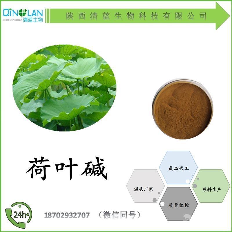 荷叶碱2%-98% 多种含量 厂家直销 价格