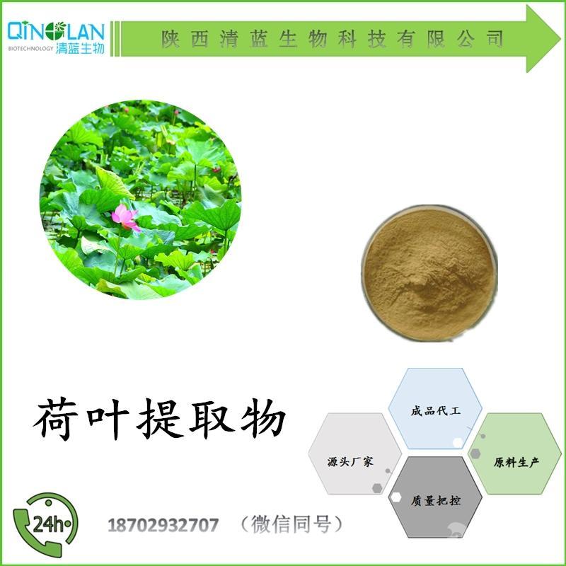 荷叶提取物10:1 全水溶 荷叶粉 价格