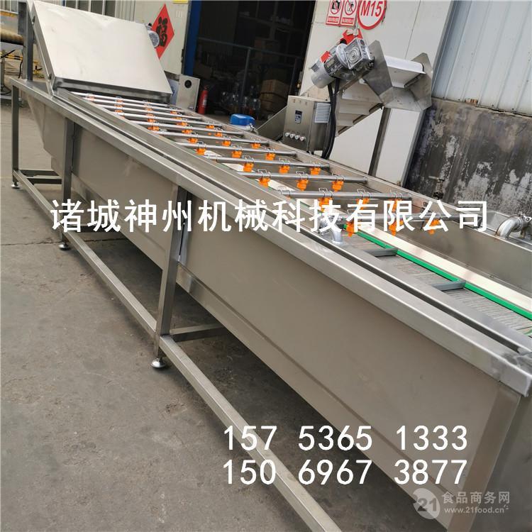青菜全自动清洗机 水果蔬菜清洗线生产厂家