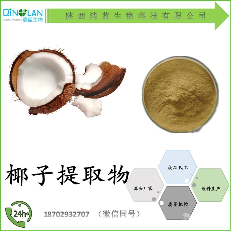 椰子提取物10:1 椰子粉 椰子果粉 包邮