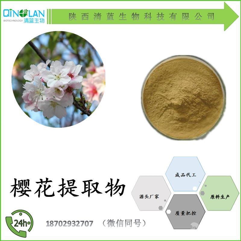 樱花提取物10:1 多种比例 樱花粉 现货供应