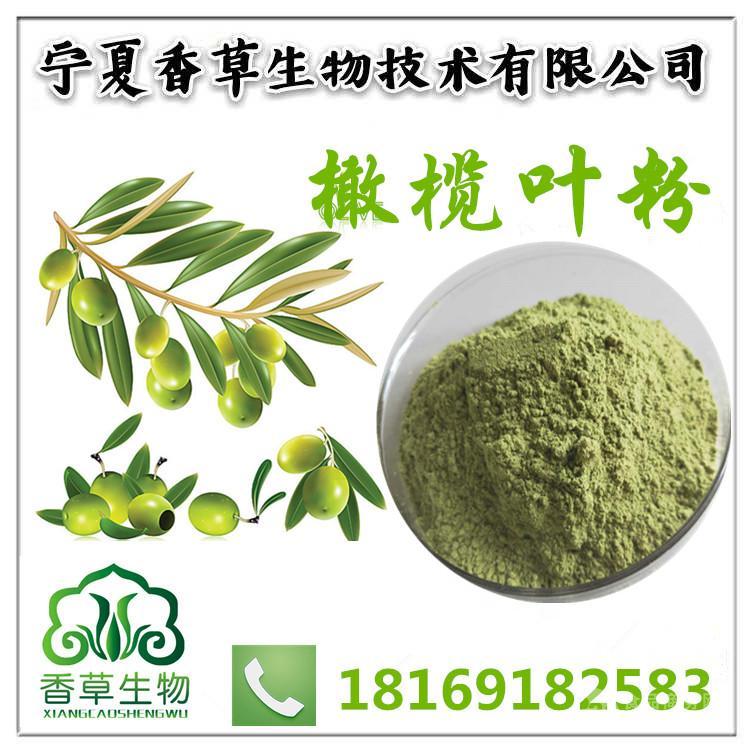橄榄叶粉批发价 超微细粉300目 青橄榄叶全粉/生粉固原厂家供应