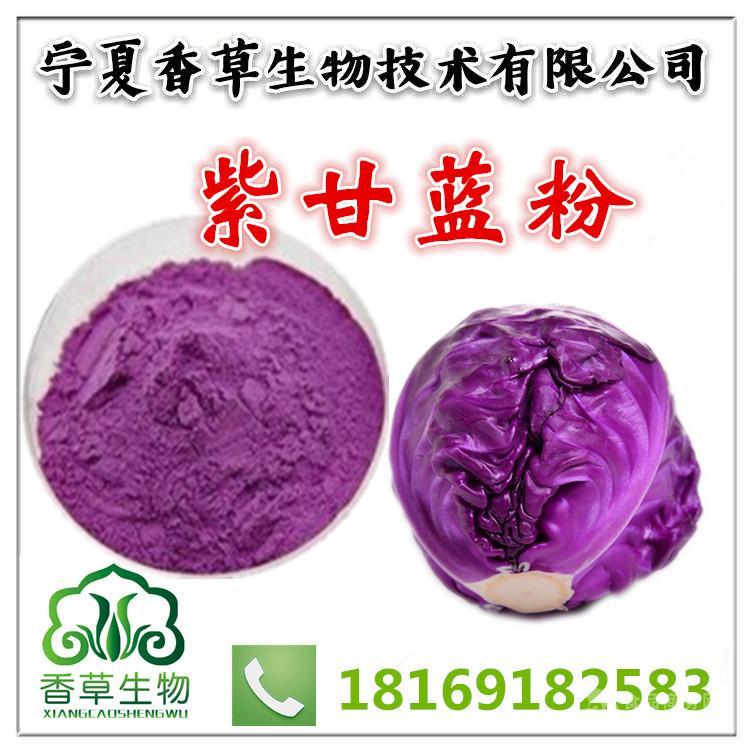 紫甘蓝粉生产厂家 宁夏紫色包菜粉批发价格 花青素果蔬菜粉大全
