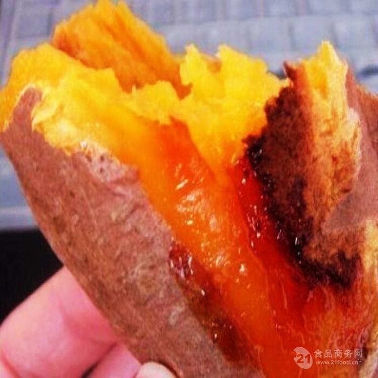 供应新型全自动连续式红薯专用烘烤线 烤烟薯加工机器 便宜实惠