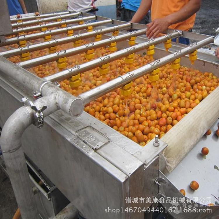 低价热销芒果专用清洗机 芒果干深加工前处理流水线设备生产厂家