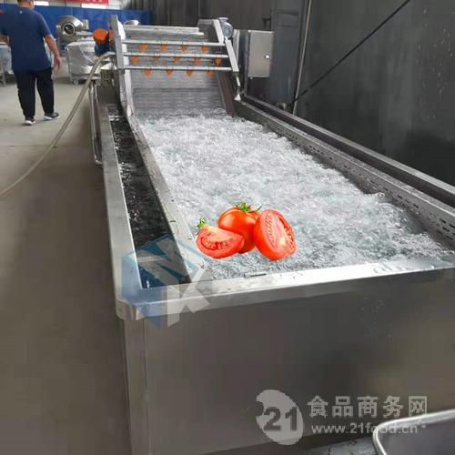 供应全自动连续式西红柿专用清洗机 番茄酱深加工清洗设备