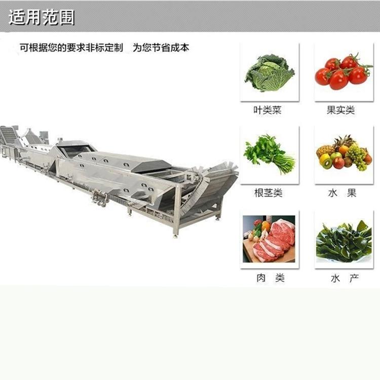 自动化连续式山野菜加工用漂烫机 小型山芹菜护色杀青预煮设备