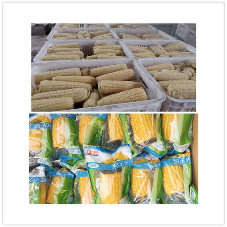 全自动小型速冻熟粘玉米加工生产线 即食真空包装糯玉米蒸煮机