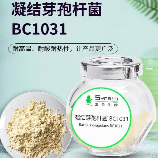 凝结芽孢杆菌BC1031