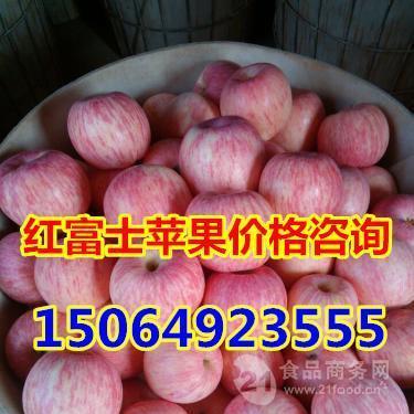 山东苹果产地价格临沂市红富士苹果产地格