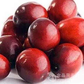 蔓越莓提取物