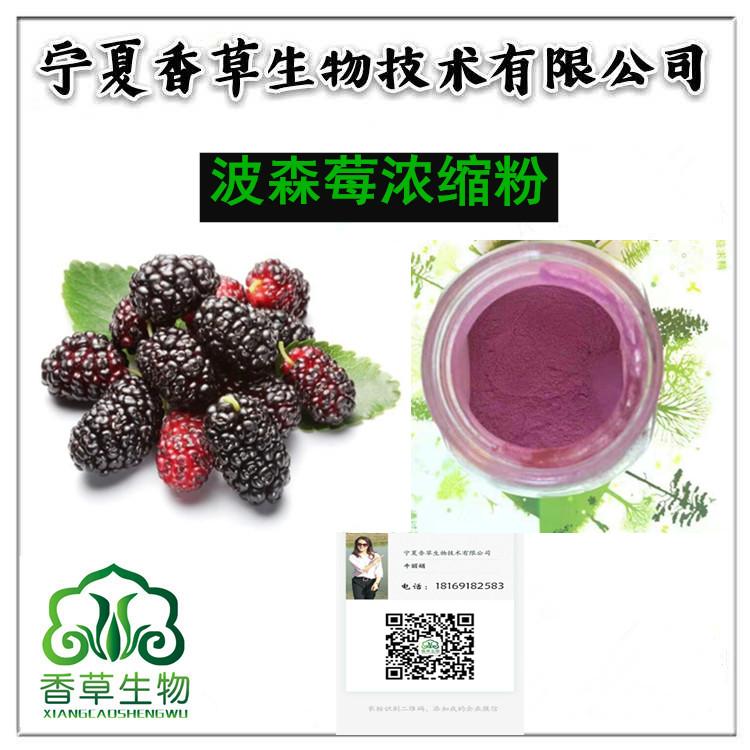 波森莓粉生产厂家 黑波森莓提取物供应 紫波森莓浓缩汁粉10倍浓缩