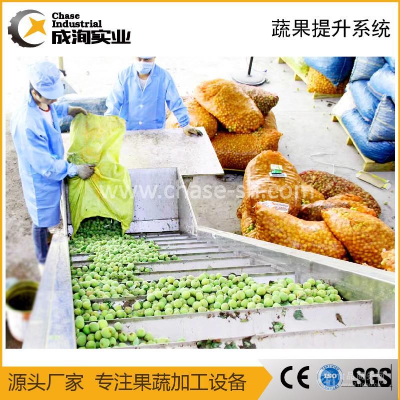 果蔬红薯甘蔗山药椰子毛刷式清洗机 厂家直销