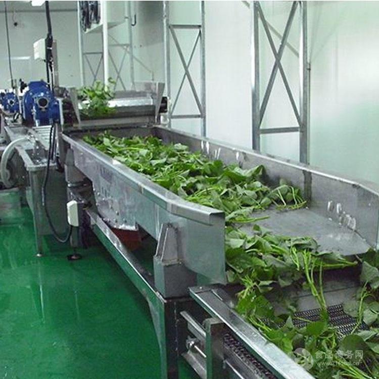 美康小型多功能红薯叶清洗漂烫杀青流水线 红薯茎连续预煮机好用