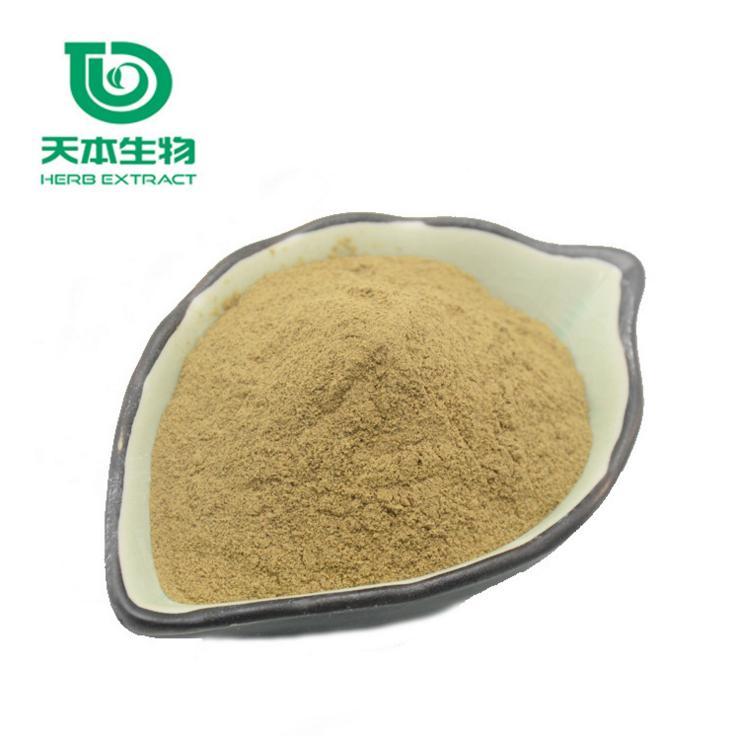 水溶生姜提取物提取方法及步骤
