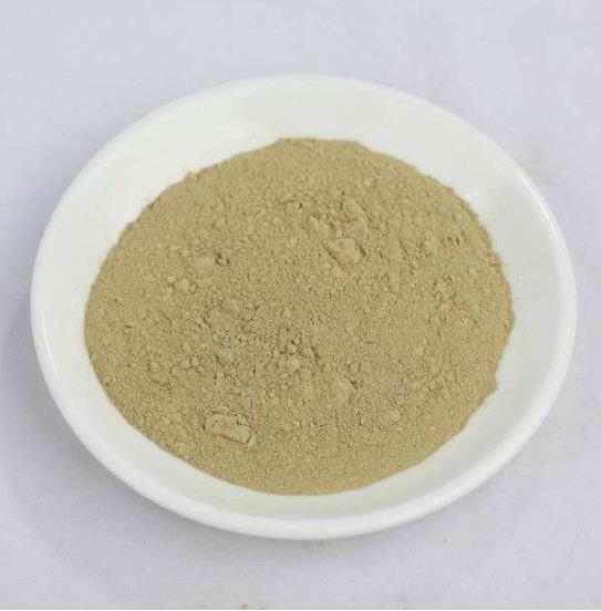 批发高含量植物提取物熊果酸