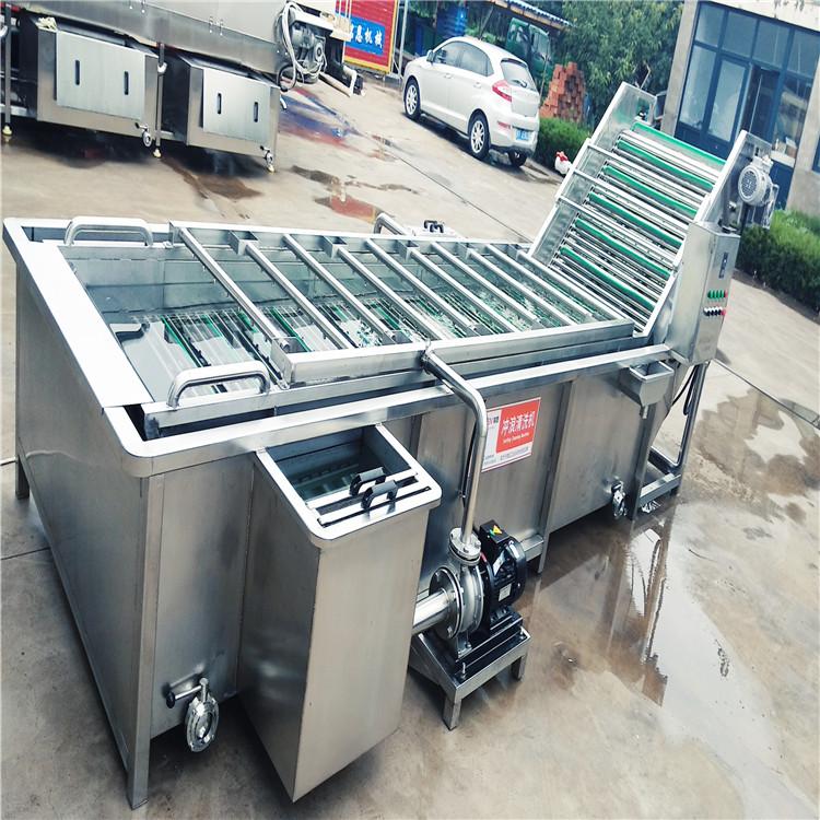 和田大棗清洗機 氣泡紅棗清洗機設備