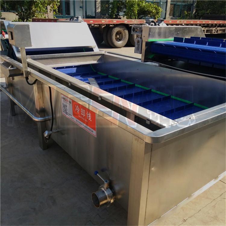 河南草莓加工流水線 草莓清洗設備