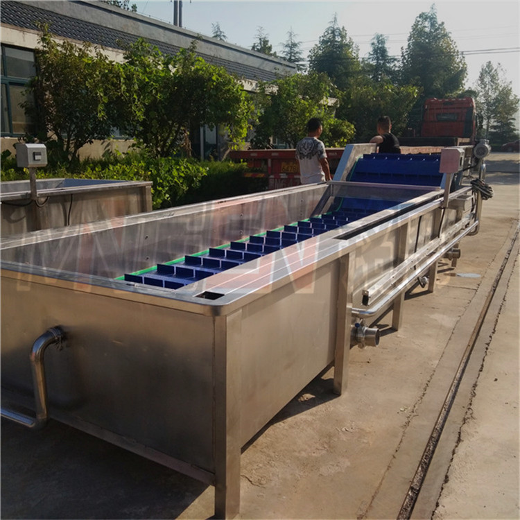 香菇清洗風幹機 果蔬清洗成套設備 專業定做氣泡洗菜機