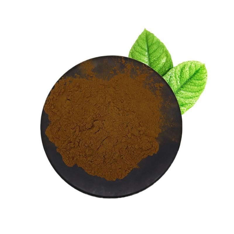 厂家直销原花青素98% 葡萄籽提取物 原花青素OPC 葡萄籽成分