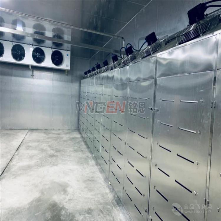 肉製品低溫高濕解凍機 牛肉低溫高濕解凍機