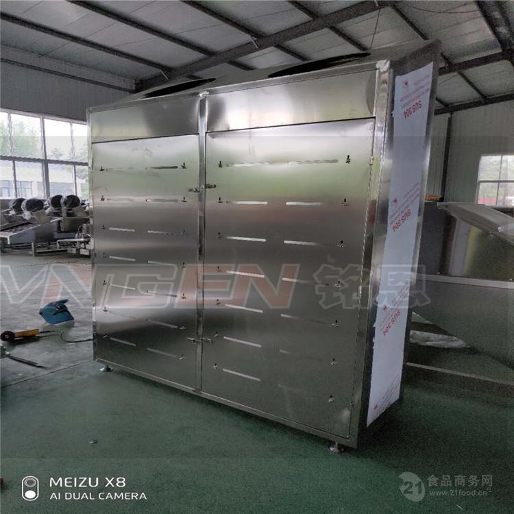 專業製造 凍肉解凍設備 緩化解凍設備 進口牛羊肉解凍機
