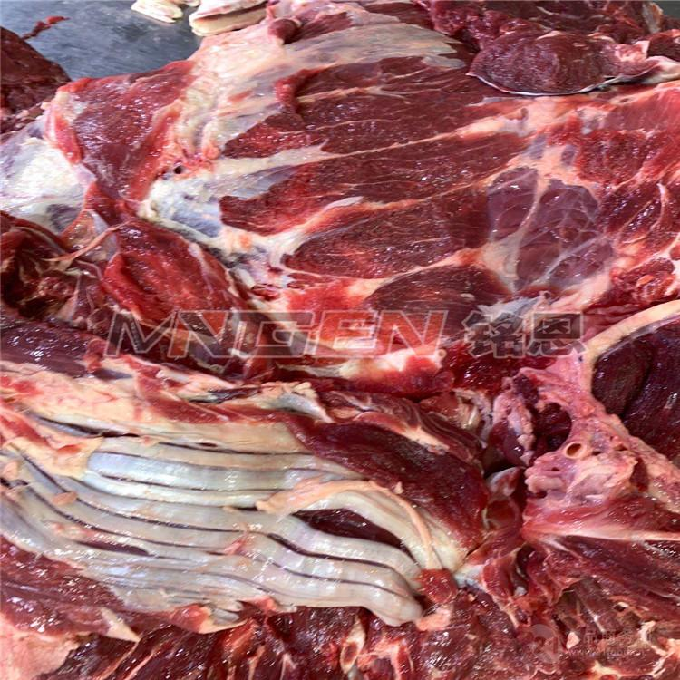 牛肉四分體低溫高濕解凍機 凍肉解凍設備