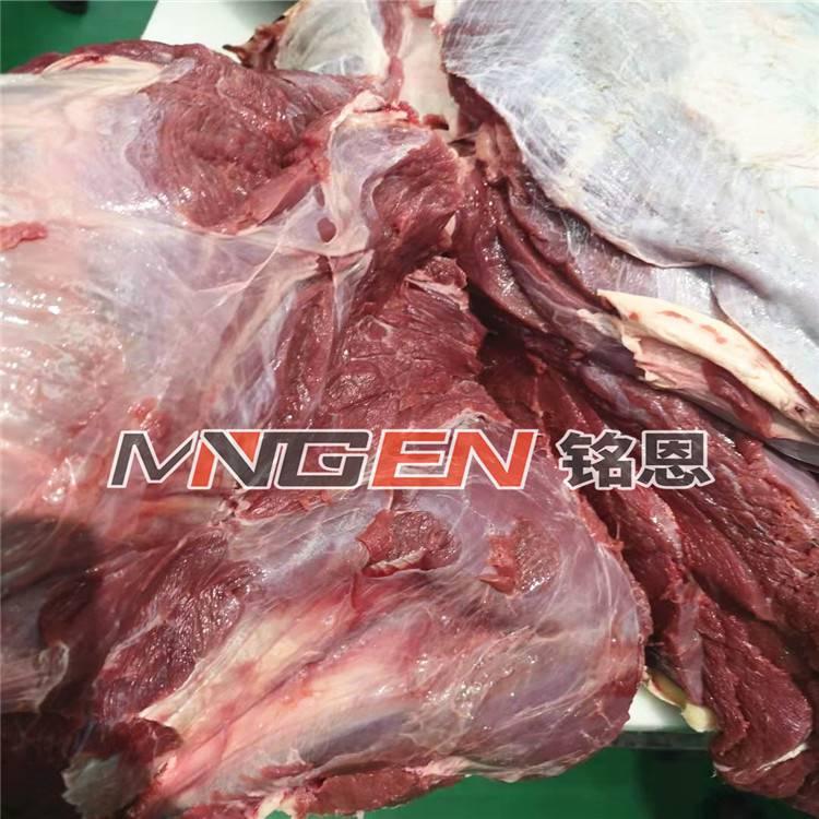 解凍機器 凍肉低溫高濕解凍機廠家直銷品質保證