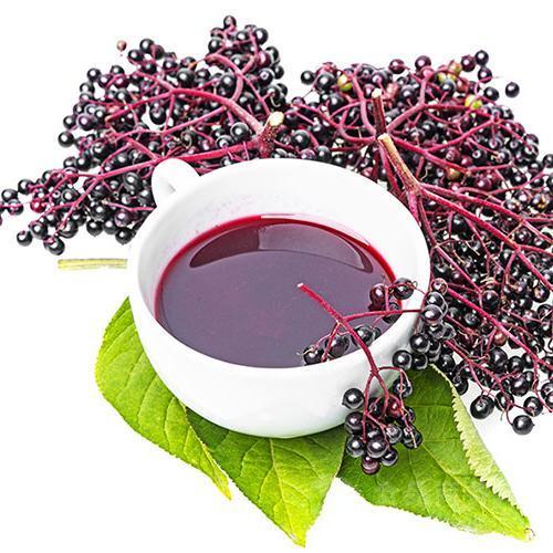 接骨木莓浓缩果汁粉10%