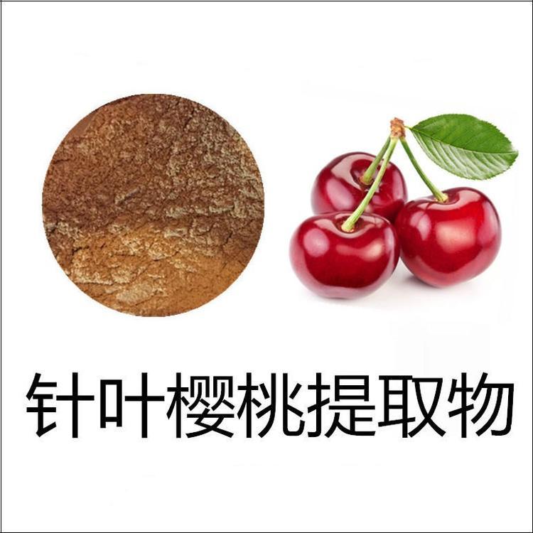 针叶樱桃提取物 针叶樱桃果粉 含樱桃VC