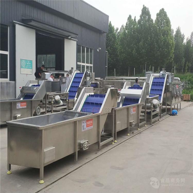 現貨直銷果蔬清洗機 大型花菜清洗機設備定製