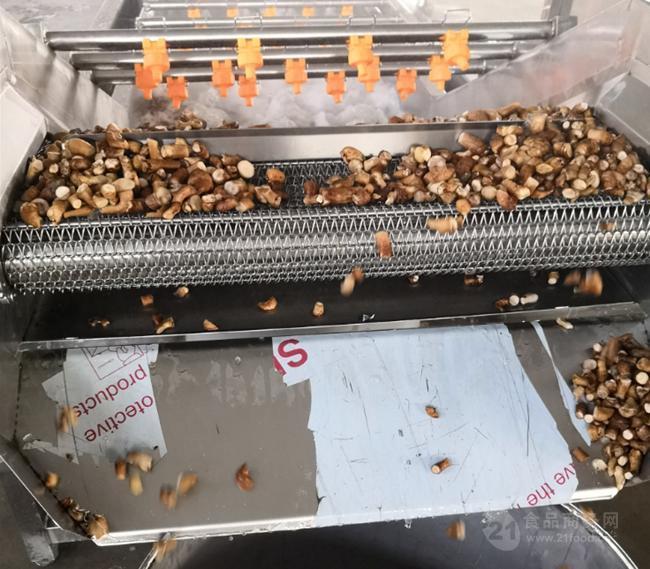 全自动香菇去杂清洗机 速冻香菇前处理深加工清洗漂烫流水线