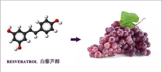葡萄浸膏(專利水溶白藜蘆醇)